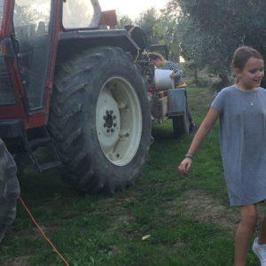 angelina en charlize olijven tractor