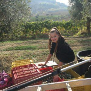 angelina olijvenpluk op tractor