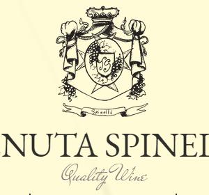 logo spinelli