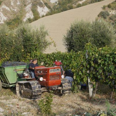 vakantie Italie 2011 (125)